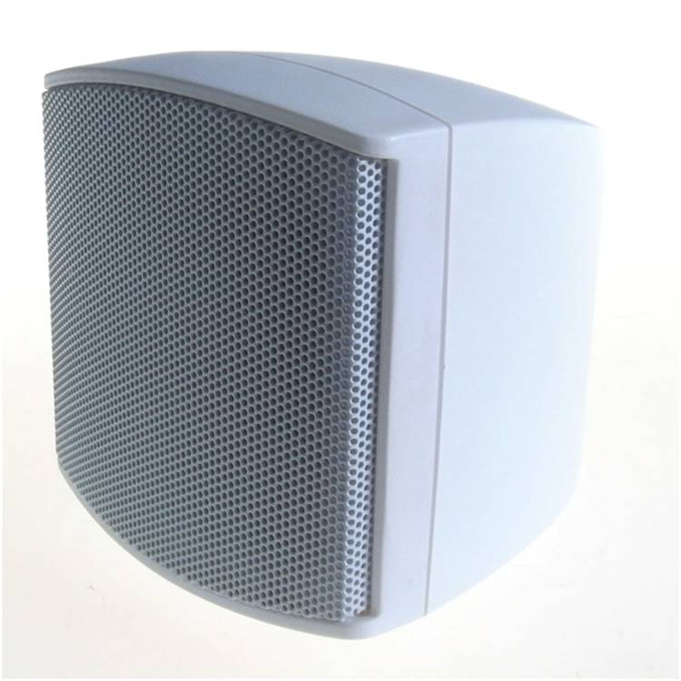 Sahara Mini Indoor/Outdoor Speakers